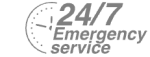 24/7 Emergency Service Pest Control in Foots Cray, DA14. Call Now! 020 8166 9746